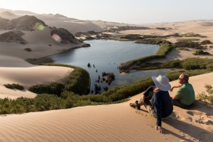 Christmas and New Year safari in Namibia
